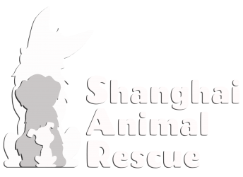 Shanghai Animal Rescue