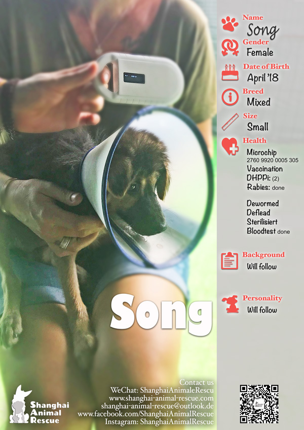 SAR-Flyer-A168-Song-